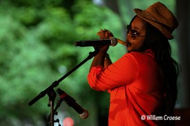 180610_03_©_Willem_Croese_Chicago_Blues_Festival