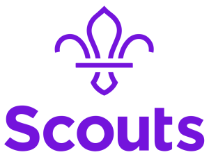 willerby scout group
