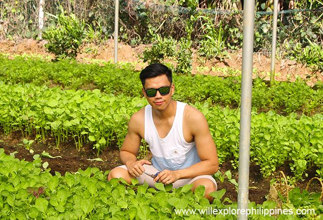 willgarciacostalesnaturefarm2b