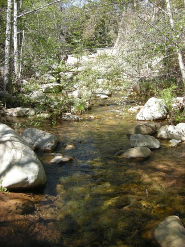 Ojai creek