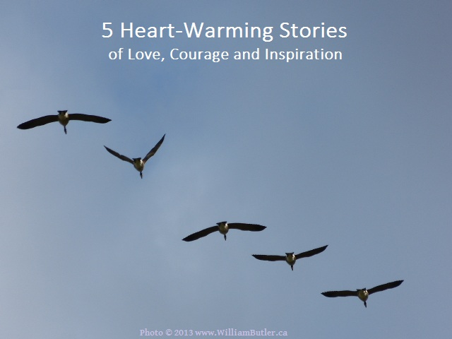 5 Stories To Inspire You