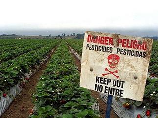 Monsanto: It Ain't Glyphosate, it's the Additives!