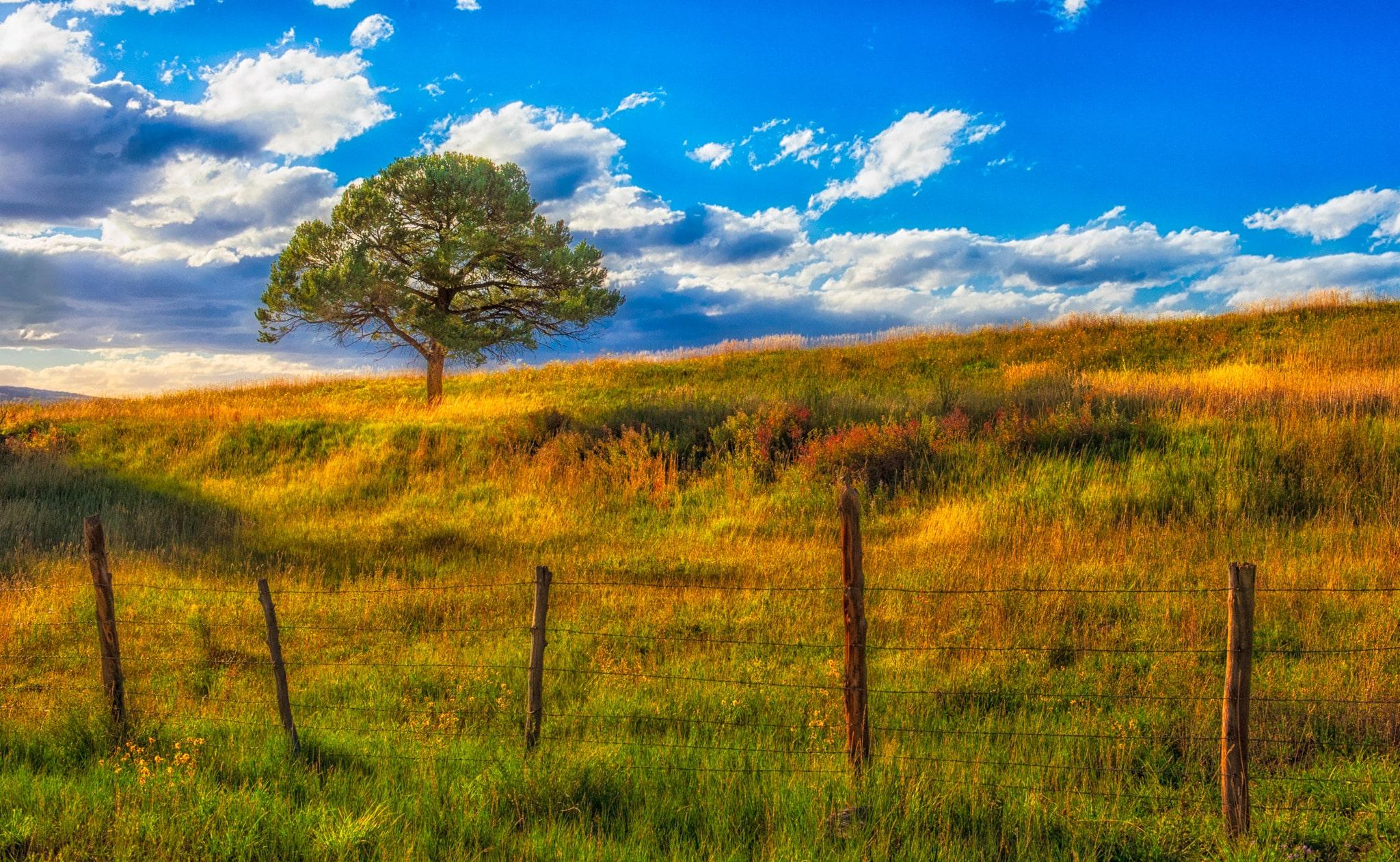 San Juan Mountains Fall Landscape Portfolio William