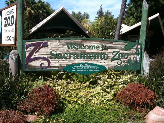 sacramento-zoo