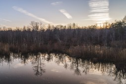 taking-to-the-skies-in-november-william-petruzzo07