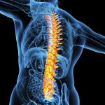 What is the McKenzie Method for Treating Back & Neck Pain? - from Tidewater Physical Therapy