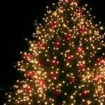 Community Christmas Tree Lighting in Colonial Williamsburg