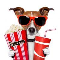 Movie Monday at WRL