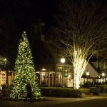 Start a Family Tradition - Come to Merchants Square for the Annual Tree Lighting on Saturday Nov 30, 2019