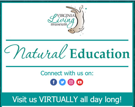 virtual learning from virginia living museum during covid19