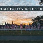 Flags will return to Veterans Park as a fundraiser - replacing Rotary's cancelled concert series