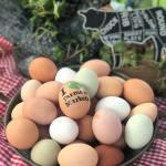 yorktown-farmers-market