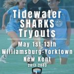 Tryouts - Tidewater Sharks Youth Soccer