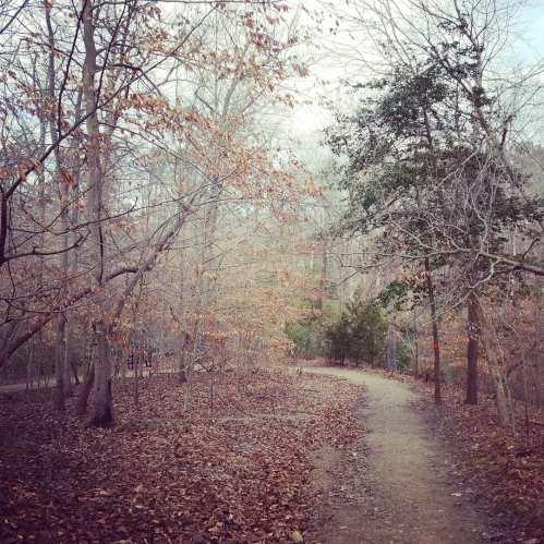 Bassett-Trace-Nature-Trail