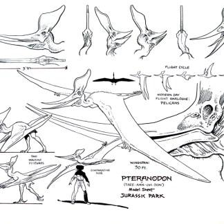 Jurassic Park Animation Model Sheet: Pteranodon