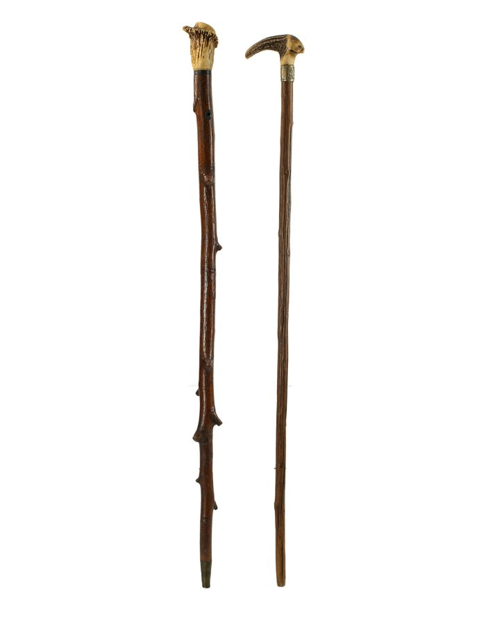 Lot 44C: Two 19th C. Stag Horn Top Canes