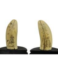 Lot 35A: 19th C. Pair of Sperm Whale's Teeth