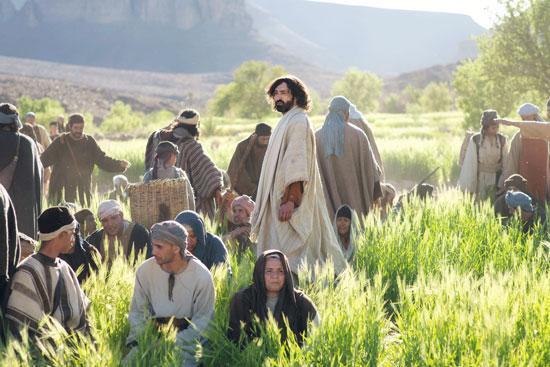 Jesus-Field