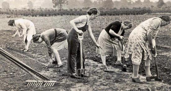 WI-women-gardening
