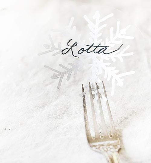 snowflake-table-lead500b