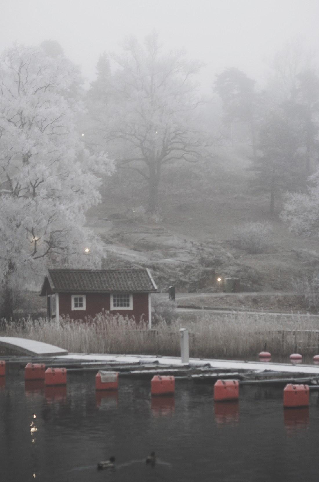 January Snowy Morninga_c