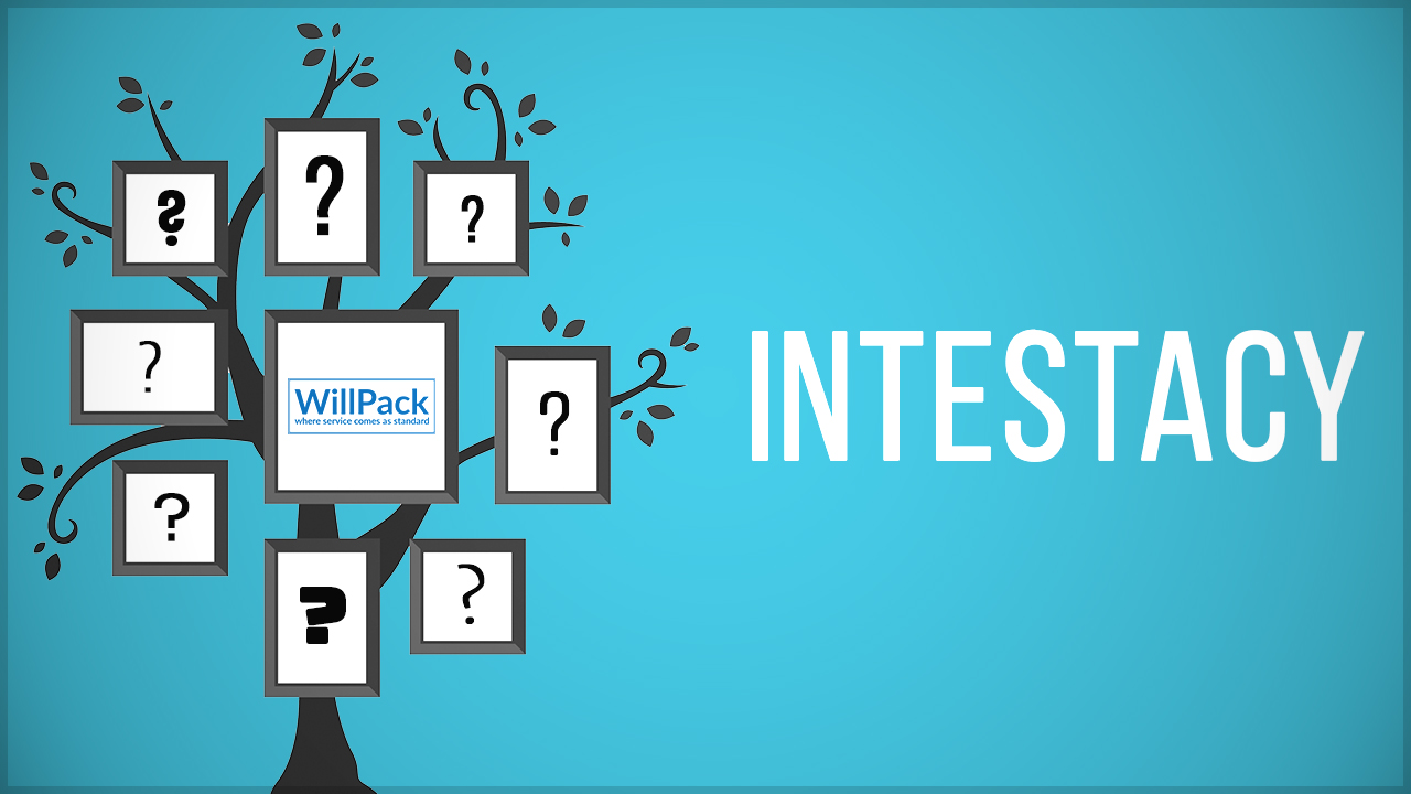 family tree, tree, question mark, blue, black, leaves, white, intestacy, text, logo, willpack