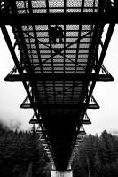 007 - portraits alexandra bridge