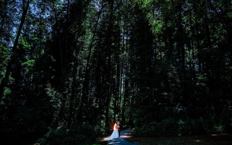 008 - forest wedding near vancouver