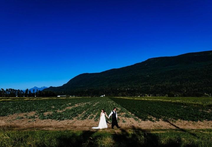 031 - country wedding fraser valley