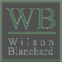 2011 WB logo