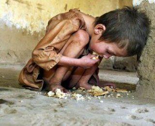 1 bilhão dos 7 bilhões estão passando fome agora! Não desperdice alimento!