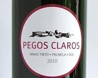 Pegos Claros 2010, Palmela, Portugal