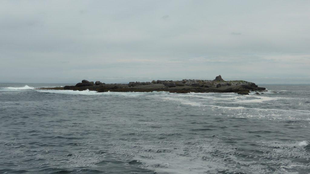 P1080646 Boottocht Cliffs of Moher
