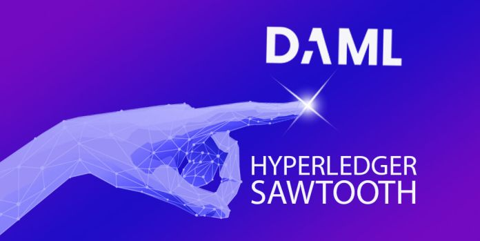 DAML to shine on Hyperledger Sawtooth