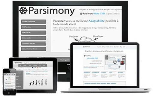 Parsimony Responsive Design