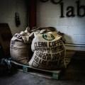 Coffee Roasting | Masterclass