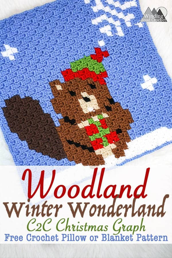 Busy Beaver C2c Crochet Graph Winding Road Crochet