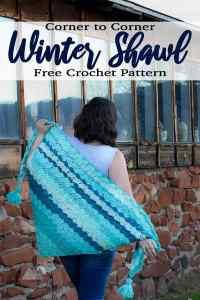 C2C Zipper Pouch Free Crochet Pattern - Winding Road Crochet