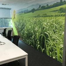 Sugar Cane Printed Wallpaper