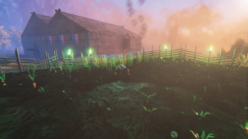 Valheim Farm Wide