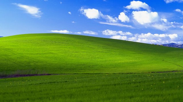 The image for the most popular Windows wallpaper ever was taken 20     Windows XP wallpaper