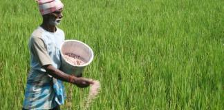 Microsoft India and ICRISAT launch agricultural App