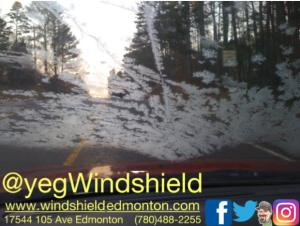 Edmonton Windshield