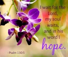 psalm-1305-e1408656604931
