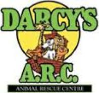 darcys arc