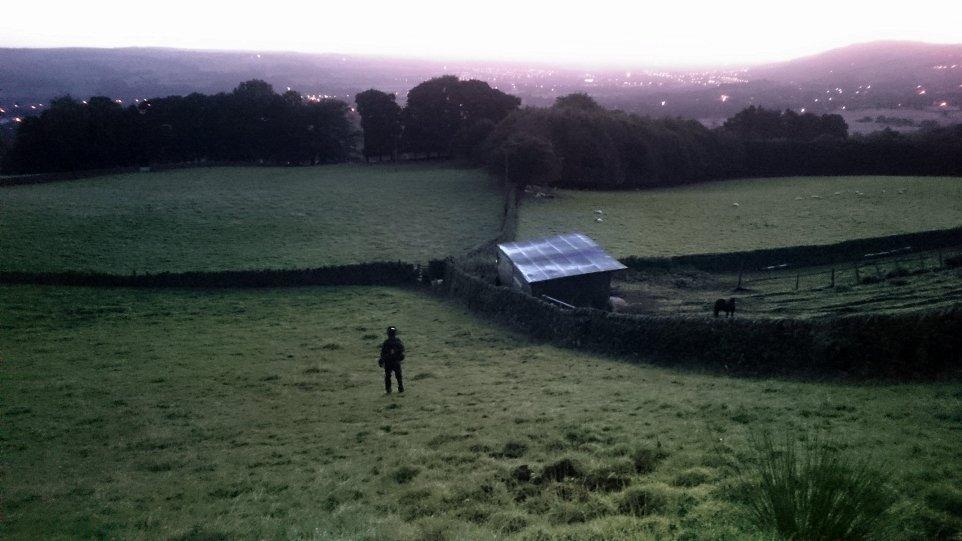 Walking down across fields in early morning light