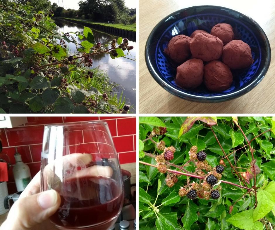 Blackberry bush, chocolates and blackberry gin
