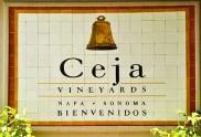 Ceja Vineyards (Edgar Solís)