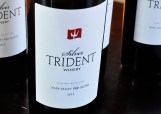 Silver Trident 2012 Playing with Fire, Napa Valley Red Blend (Edgar Solis)