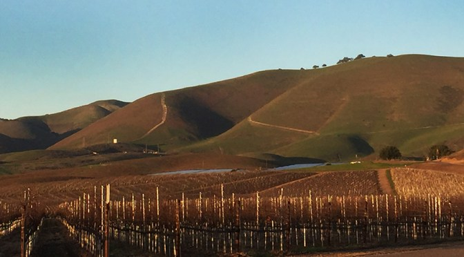 Six wine reasons to visit Santa Maria Valley